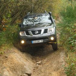 Ardennes insolite 9