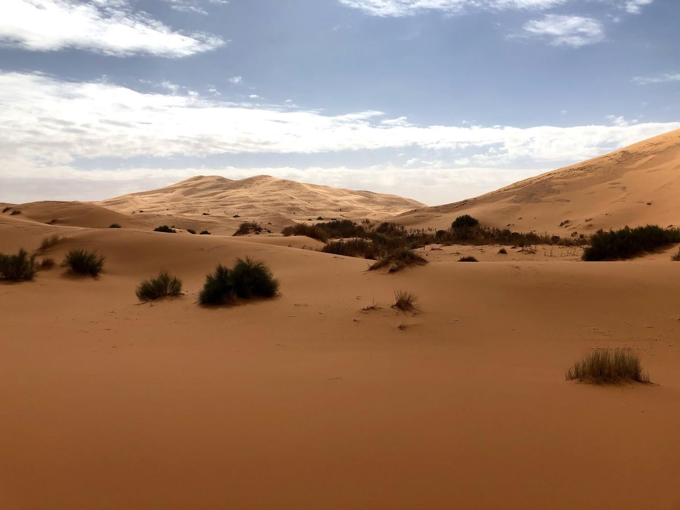 Maroc 73