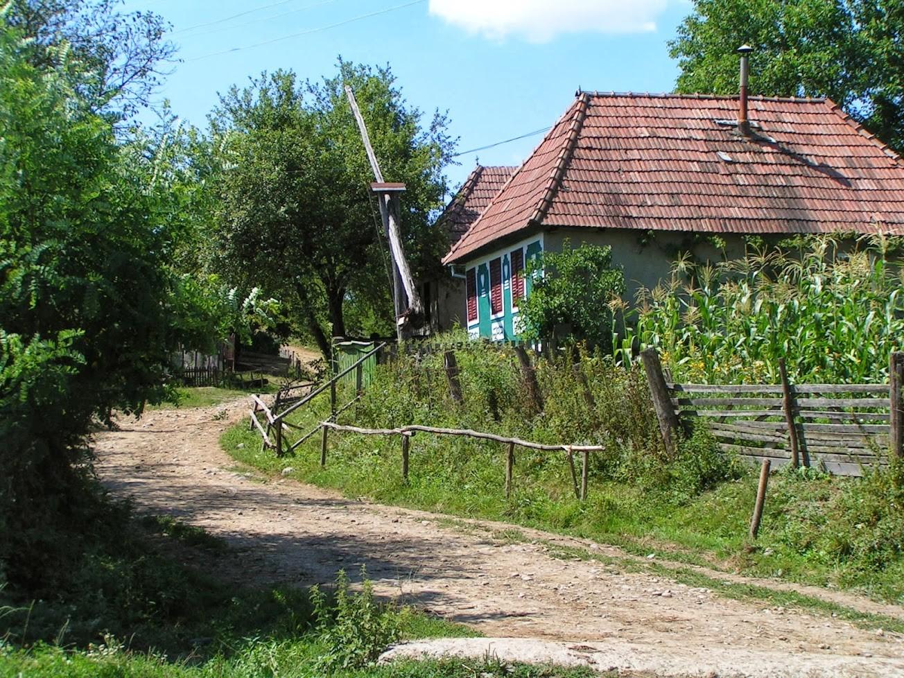 Roumanie bivouac 19